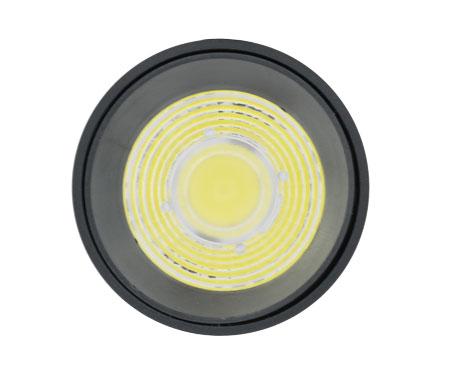 led roi ray 10w